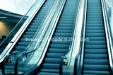 Excellent quality steady riding passenger Escalator with CE