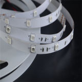 High Quality 12V SMD5050 LED Strips with CE
