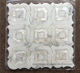 Calacatta Gold White Marble Mixed Shell Waterjet Mosaic Tile