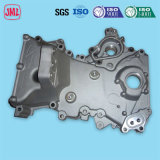 China Supplier of Die Casting