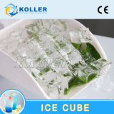 Edible Ice Cube Machine Manufacturers with Refrigeration Unit Koller CV6000
