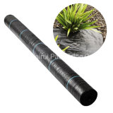 Egp Pmw006 Anti UV Plastic Agricultural Woven Best Weed Control Products