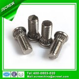 Flat Head Stainless Special Knurled Neck Bolt Screw
