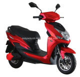 High Quality Electric Motorbike with 800W Motor