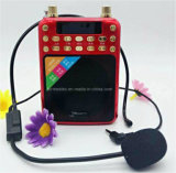 USB TF Card Radio Portable Amplifier with Dual TF Battery