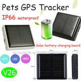 IP66 Waterproof Pets GPS Tracker with Solar -Powered Battery V26