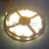 High Brightness 5050 LED Strip Light with Best Price