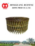 Round Head, Flat Type, 2.3 X57mm, Ring Shank, Bright, 15 Degree Wire Collated Siding Nails, Coil Nails