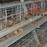 Cheap Automatic Chicken Equipment Poultry Cage for Pullet Chicken