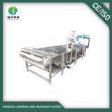 High Efficient Vegetable and Fruit Sterilizing and Blanching Machine