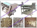 Stainless Steel Mushroom Cutter Slicer Machine (WSXG)