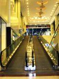 Factory Price Outdoor Indoor Reliable Moving Walks