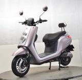 500-800W New Cool Electric Scooter Adult City Electric Motorbike