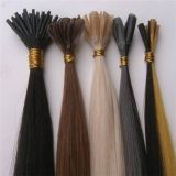 Nail Fusion Pre-Bonded Hair Extension (PPG-l-02101)
