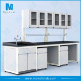 Lab Wall Bench with Overhead Cabinet