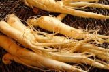 Hot Sale Factory Supply Directly Competitive Prices 100% Natural Ginseng Extract