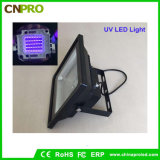 Outdoor 100W UV LED Floodlight with Waterproof