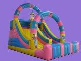 2015 New Inflatable Slide Amusement Park Castle (SL-041)