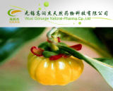 on Sell High Quality Garcinia Cambogia Extract