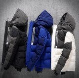 Custom Fashion Winter Coat Men Best Oversized Black/White/Blue/Grey Waterproof/Windproof/Windbreaker Puffer Duck Down Jacket with Hood