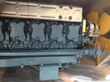Cheap Mechanical Diesel Engine Wd615g220e21 Used for Loader in Russia