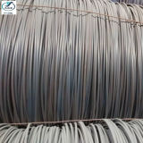SAE1008 Hot Rolled Steel Wire Rod in Coil