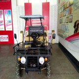 UTV 2X4 Chinese Utility Vehicle 800cc Diesel Buggy with Dump