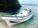 High Hardness Fiberglass Boat for Sale