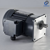 Vertical Brake AC Gear Motor with Aluminum_D