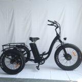 Wholesale 3 Wheel Tricycle Electric Trike /Eelctric 3 Wheel Bicycle