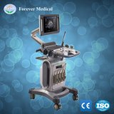 Ce Approved 15 Inch Hospital Medical Cardiac Fetal Monitor Echo Equipment Ultrasound Scanner with Trolley (YJ-U10T)