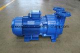 High Pressure Vacuum Pump with Price