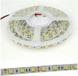 24V Warm White 2700K LED Strip Lights Color Temperature for Club, Hotel, TV