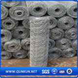 Hot Dipped Galvanized Hexagonal Wire Mesh on Sale