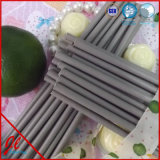 Pine Coffee Straws Stripe Straws Reusable Straws
