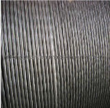 Steel Wire Strand 1*19s-FC ISO9001: 2008