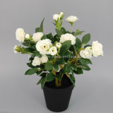 New Design Artificial Flower Rose Bonsai