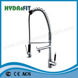 Pull-out Sink Mixer/Faucet (FT883)