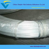 Galvanized Wire From Directly Factory