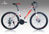 CE Bike/MTB Bicycle with Merchanic Disc Brake (XC500)