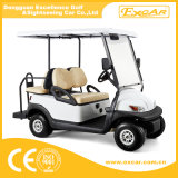 Mini 4 Seats Electric Golf Sightseeing Buggy
