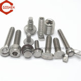 Manufacture Provide Stainless Steel Screws