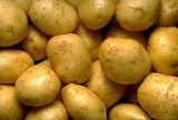 2017new Crop/Top Quality/for Global Market/Fresh Potato (90g and up)