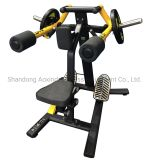 Factory Direct Sale Gym/Fitness Equipment Free Weight/Plate Loaded Machine Lateral Raise (AXD-M1021)