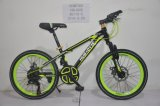 Steel Frame Mountain Bicycle 20 Inch Copy Alloy
