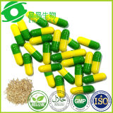 Tongkat Ali Extract Beta-Carboline Breast Cancer Herbal Treatment