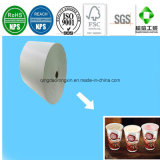 170GSM Hot Sale Disposable Coffee Cup Paper