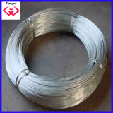 Electro/Hot-Dippped Galvanized Iron Wire (TYH-035)