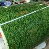 Chinese grass design PPGI galvanized steel coil