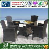 Garden Patio Furniture New Wicker Outdoor Indoor Dining Table and Chair Set (TG-1057)